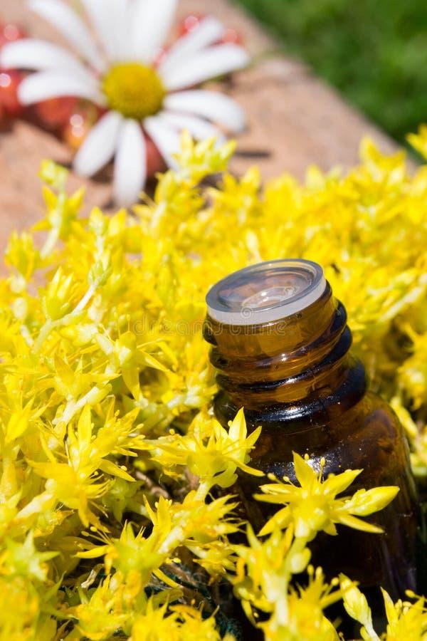 Aceite esencial con las flores amarillas imagen de archivo