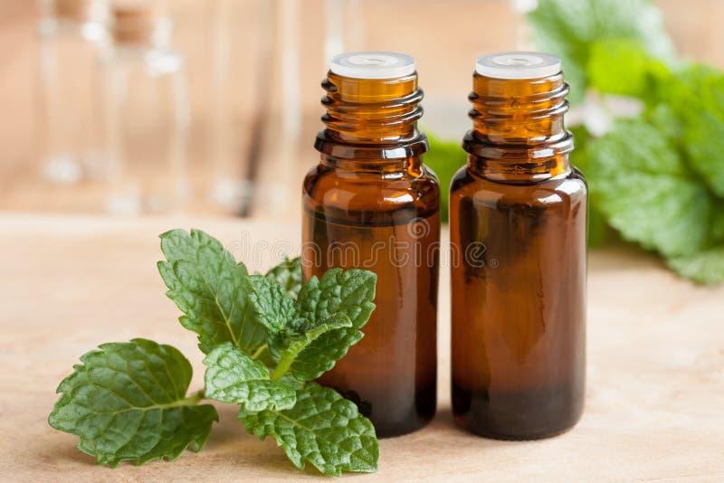 Aceite esencial de la hierbabuena - dos botellas con las hojas de menta fresca en el primero plano imagenes de archivo