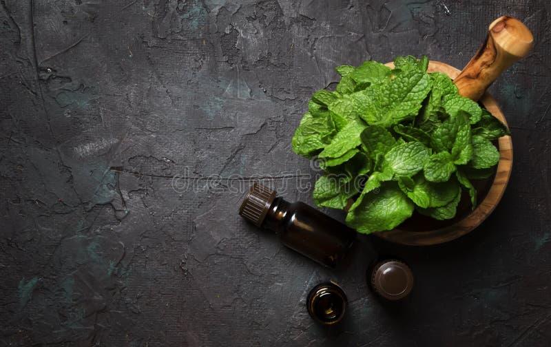 Aceite esencial de la hierbabuena en una pequeña botella marrón con g fresco imagen de archivo
