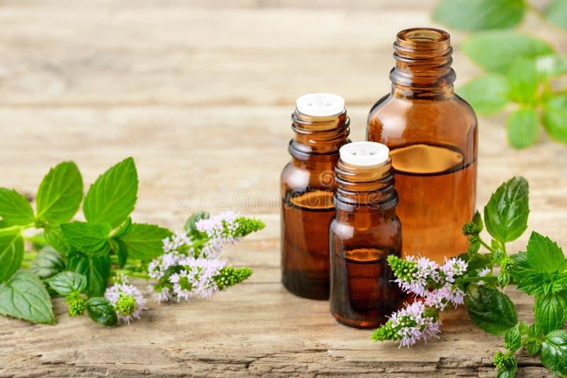 Aceite esencial de la hierbabuena y flores de la hierbabuena en el tablero de madera fotos de archivo