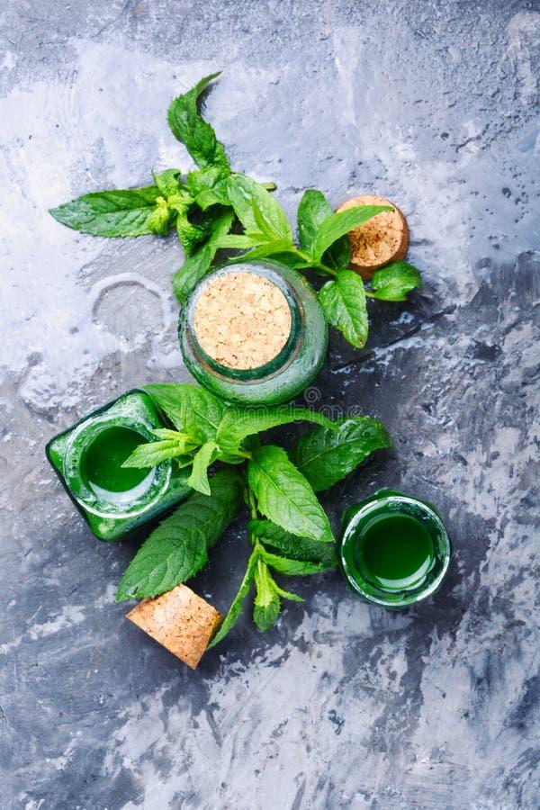 Aceite esencial de la menta con las hojas verdes foto de archivo libre de regalías