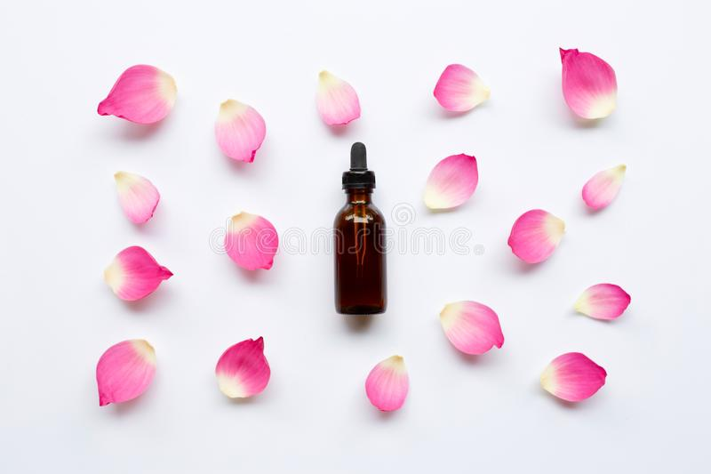 Aceite esencial de Lotus con los pétalos del loto en blanco foto de archivo