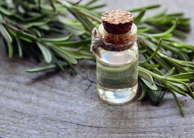 Aceite esencial de Rosemary en una botella de cristal con la hierba verde fresca del romero en la tabla de madera vieja Aceite de imagen de archivo libre de regalías
