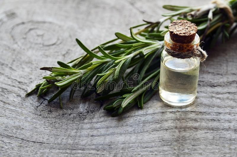 Aceite esencial de Rosemary en una botella de cristal con la hierba verde fresca del romero en la tabla de madera vieja Aceite de fotografía de archivo libre de regalías