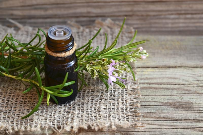 Aceite esencial de Rosemary en una botella de cristal del dropper con la hierba verde fresca del romero en la tabla de madera vie fotografía de archivo