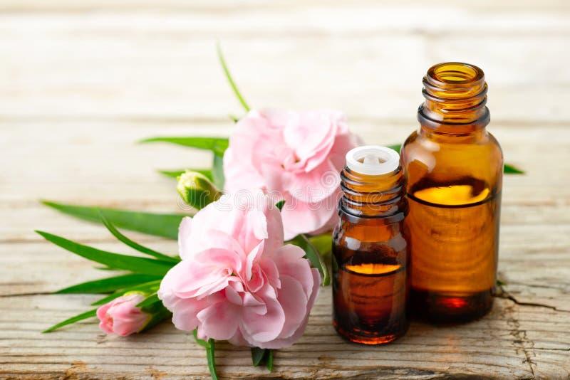 Aceite esencial del absoluto del clavel y flores rosadas en la tabla de madera foto de archivo libre de regalías