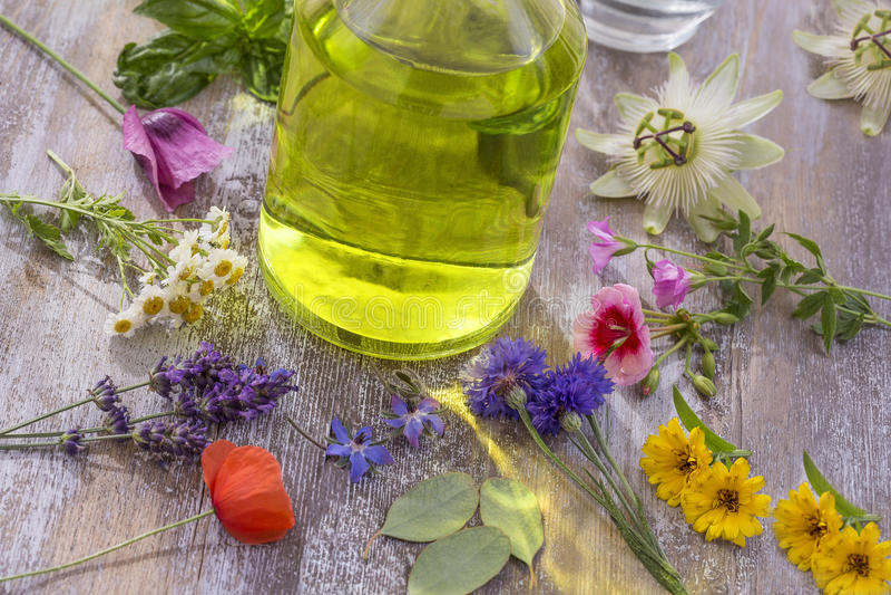 Aceite esencial del aroma Botella entre las flores frescas coloridas, variedad medicinal de la visión superior r de las hierbas,  foto de archivo libre de regalías