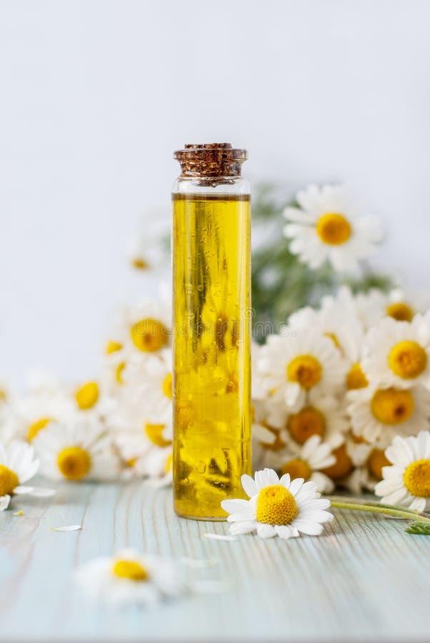 Aceite esencial del aroma con la manzanilla en fondo de madera Foco selectivo foto de archivo