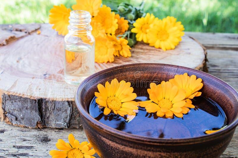 Aceite esencial del Aromatherapy con las flores del calendula en un fondo de madera en naturaleza Extracto de tinte del calendula fotos de archivo libres de regalías