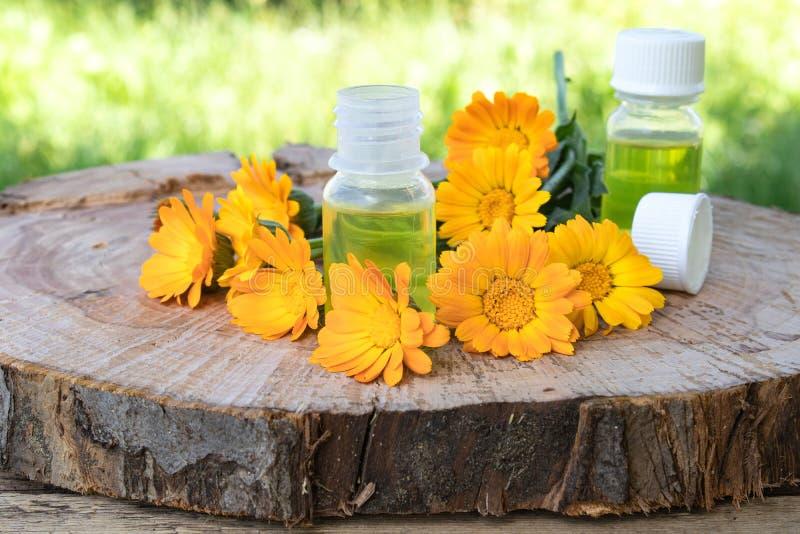 Aceite esencial del Aromatherapy con las flores del calendula en un fondo de madera en naturaleza Extracto de tinte del calendula foto de archivo libre de regalías