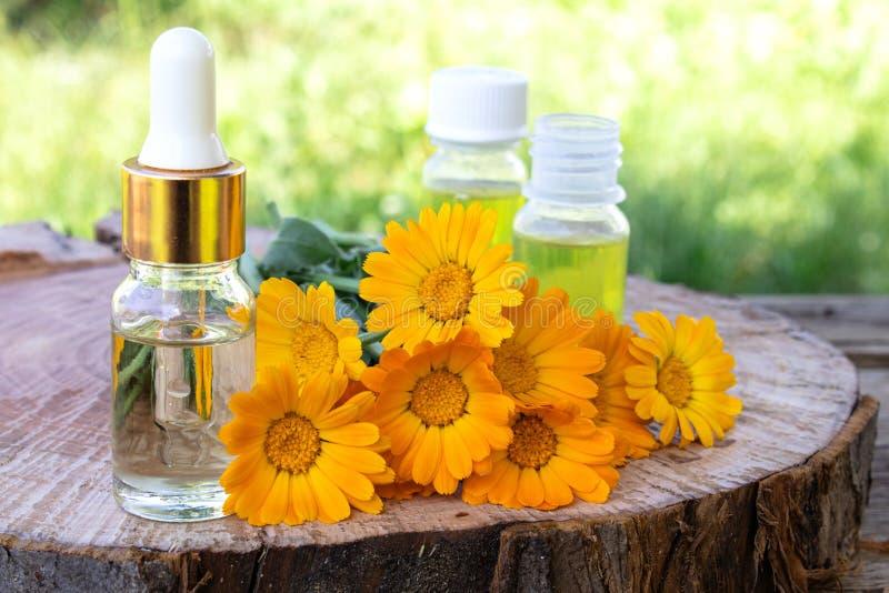 Aceite esencial del Aromatherapy con las flores del calendula en un fondo de madera en naturaleza Extracto de tinte del calendula imagenes de archivo