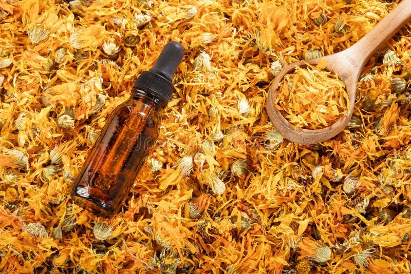 Aceite esencial del Aromatherapy con las flores de la maravilla - officinalis del Calendula Espacio del texto foto de archivo