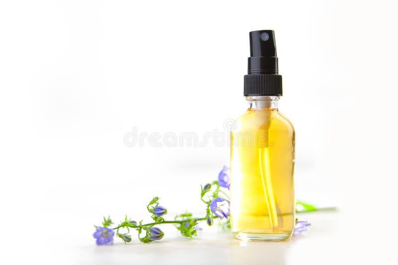 Aceite esencial del Bellflower en botella hermosa en el fondo blanco imagen de archivo libre de regalías