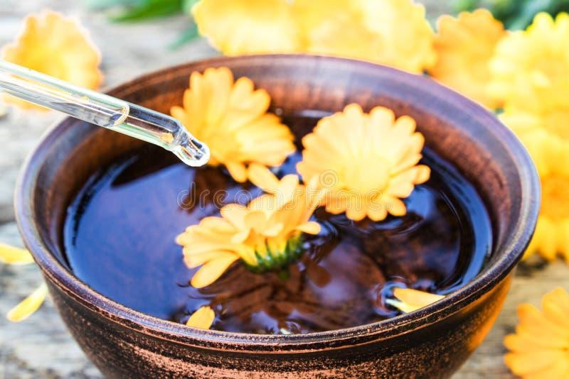 Aceite esencial del Calendula cerca de las flores amarillas del calendula en un fondo de madera Extracto de tinte del calendula e fotografía de archivo libre de regalías
