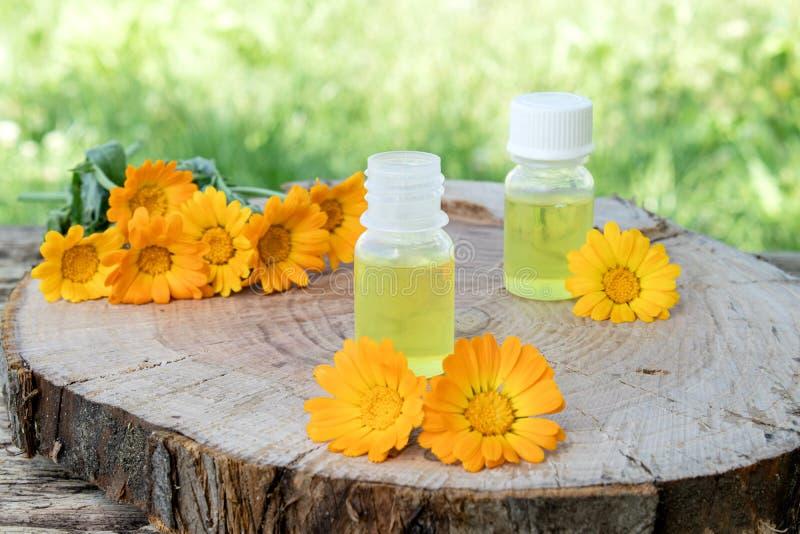 Aceite esencial del Calendula cerca de las flores amarillas del calendula en un fondo de madera en naturaleza Extracto de tinte d imagenes de archivo