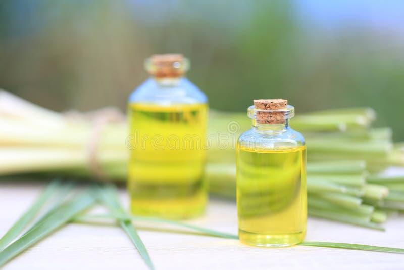 Aceite esencial del Cymbopogon en las botellas de cristal en fondo verde natural imágenes de archivo libres de regalías