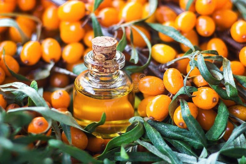 Aceite esencial del espino cerval de mar Hippophae en la botella de cristal con las bayas amarillas maduras frescas, jugosas en l fotografía de archivo libre de regalías