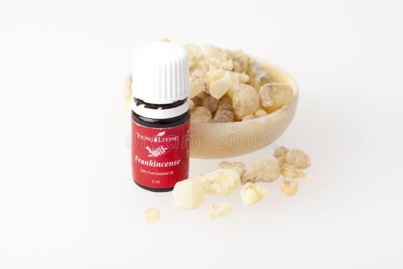 Download Aceite Esencial Del Incienso Foto de archivo editorial - Imagen de lituania, aroma: 100527288