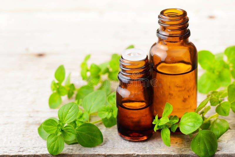 Aceite esencial del orégano en la botella de cristal ambarina y las hojas frescas del orégano foto de archivo libre de regalías