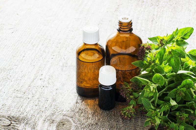 Aceite esencial del orégano para el aromatherapy en envases de cristal oscuros en fondo de madera con orégano fresco selectivo imagenes de archivo