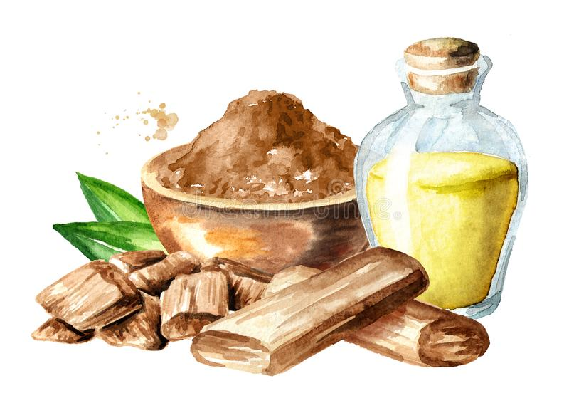 Aceite esencial y palillo, polvo del sándalo o de Chandan con las hojas verdes Ejemplo exhausto de la mano de la acuarela aislado libre illustration
