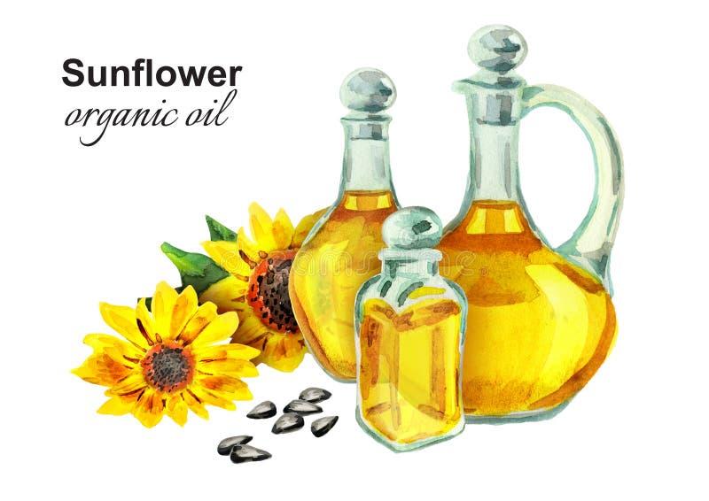 Aceite orgánico del girasol watercolo stock de ilustración
