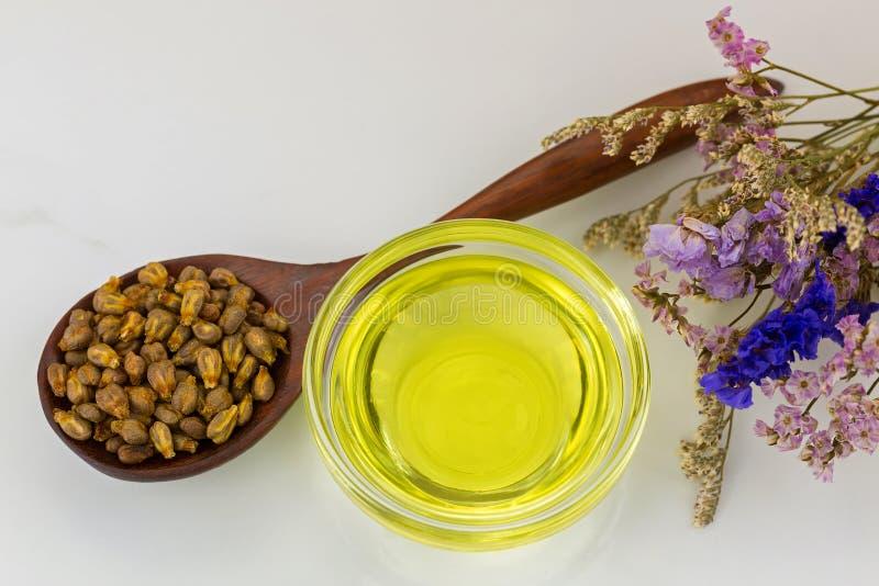 Aceite planchado en frío orgánico de la semilla de uva en cuenco claro con el grap secado fotos de archivo