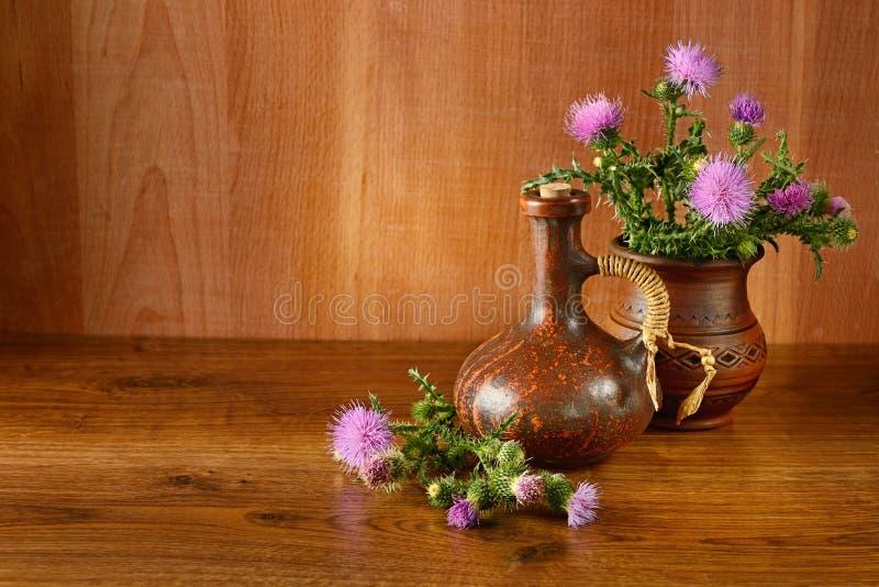 Aceite y flores del cardo de leche fotos de archivo
