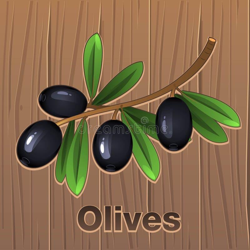 Aceitunas negras en una rama ilustración del vector