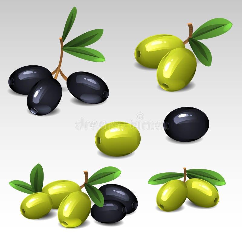 Aceitunas negras y verdes stock de ilustración