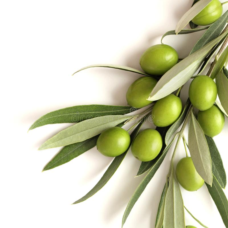 Aceitunas verdes en blanco imagen de archivo