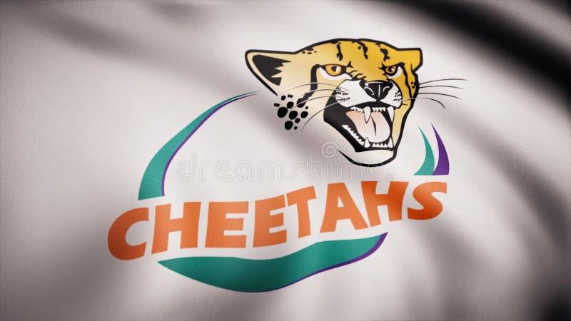 Acenando na bandeira do vento com o símbolo da equipe do rugby as chitas centrais Conceito dos esportes Uso editorial somente ilustração royalty free