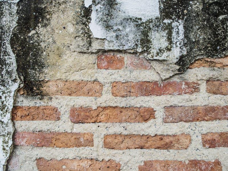 Acera roja del camino de la textura y de los bloques de la pared de ladrillo del fondo del Grunge fotos de archivo libres de regalías