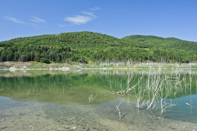 Download Acerenza湖 库存图片. 图片 包括有 横向, 意大利, 水平, 结构树, 反射, 工厂, browne - 15698805