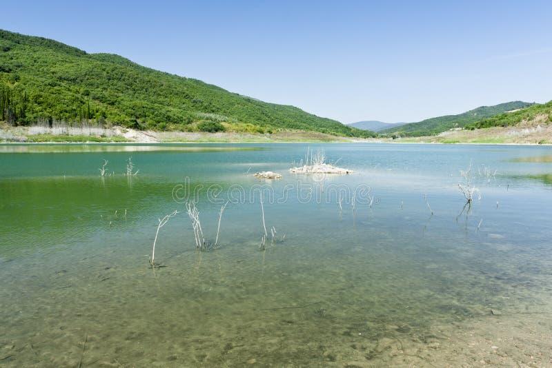 Download Acerenza湖 库存图片. 图片 包括有 水平, 工厂, 天空, 结构树, browne, 空白, 本质 - 15698827