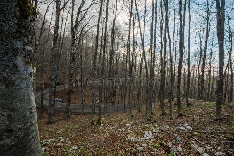 ` Acero, accès de Forca d au ` Abruzzo, Italie de Parco Nazionale d photo libre de droits