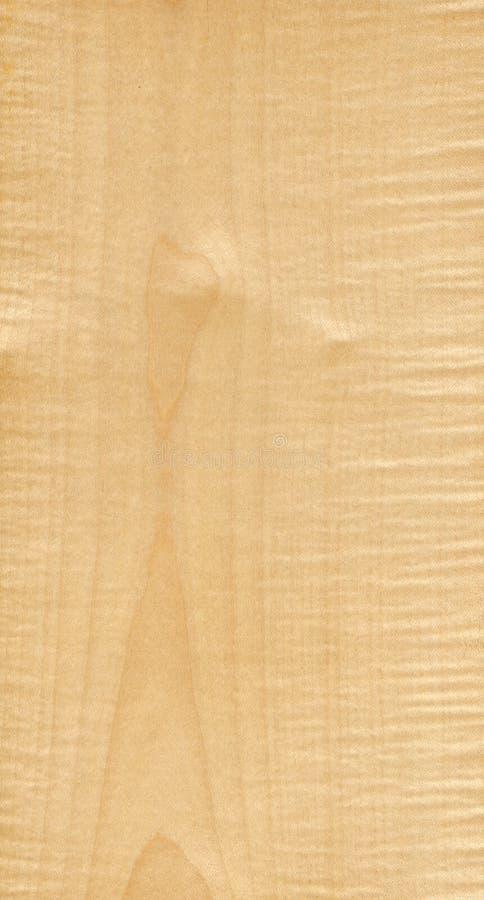 Acero di legno immagine stock