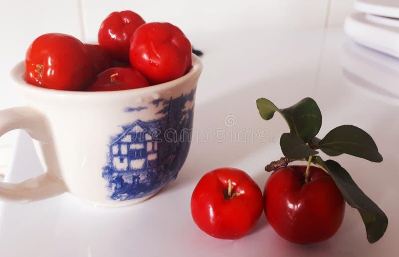 Acerola tropical de Fruts- imagens de stock