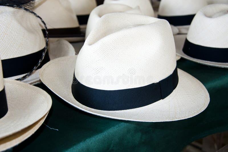 Acessório - chapéus de Panamá imagem de stock royalty free