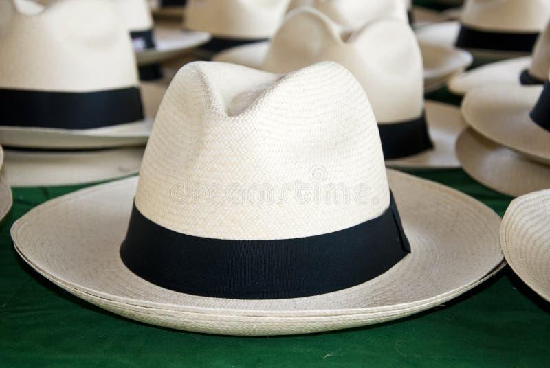 Acessório - chapéus de Panamá fotografia de stock