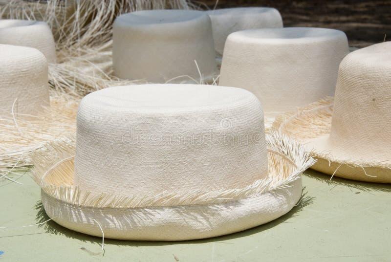 Acessório - chapéus de Panamá imagens de stock royalty free