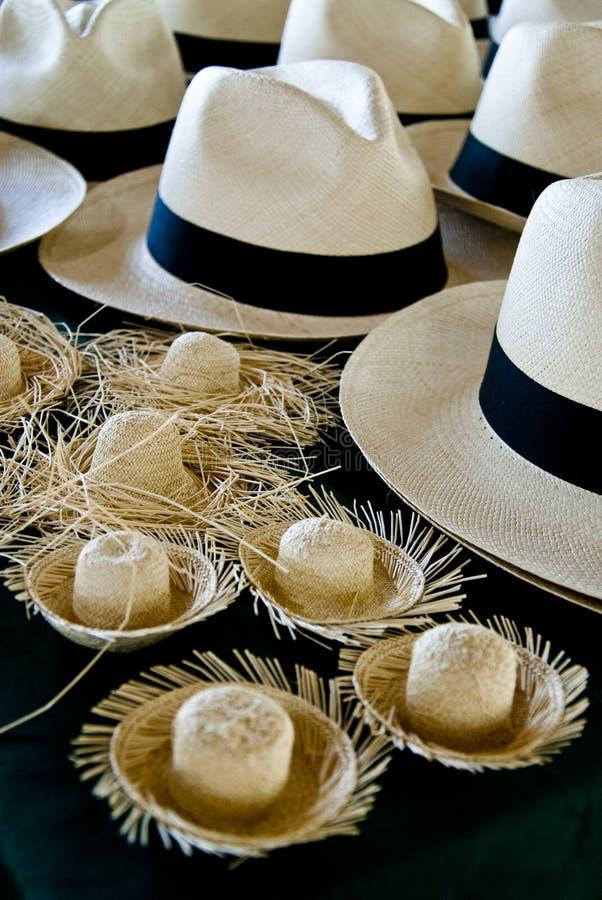 Acessório - chapéus de Panamá foto de stock royalty free