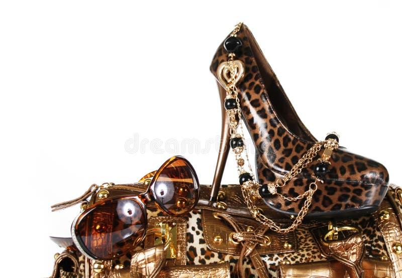 Acessórios da cópia do leopardo: bolsa, sapata, sunglass imagem de stock