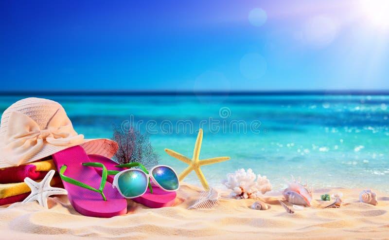 Acessórios da praia com as conchas do mar no litoral foto de stock royalty free