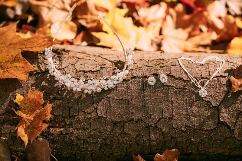 Acessórios para a noiva na perspectiva do tronco de árvore e da folha do outono artwork Conceito do casamento do outono imagem de stock royalty free