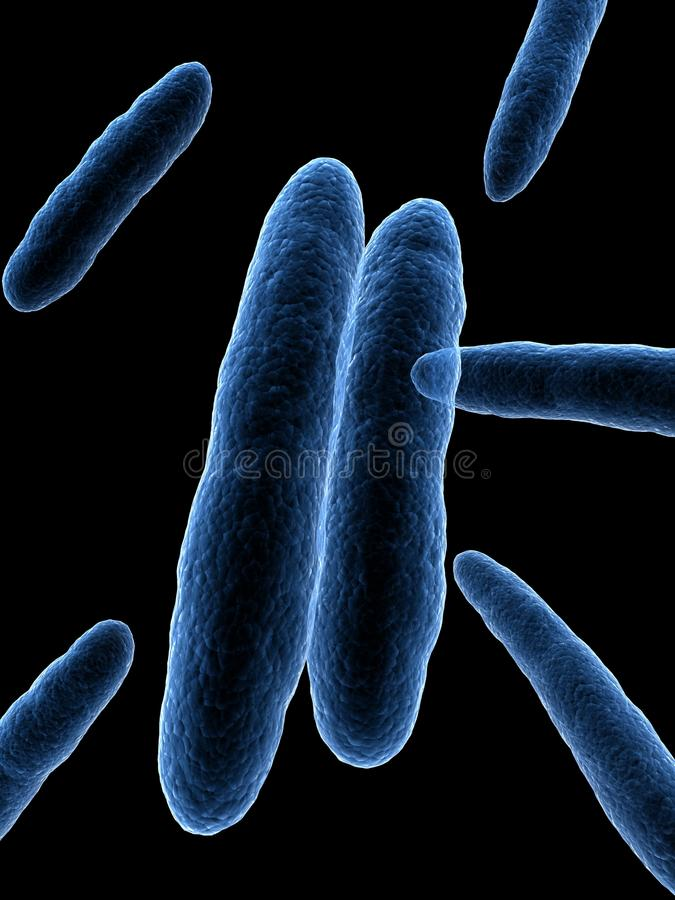 Acetobacter royalty illustrazione gratis
