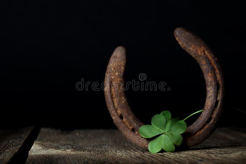 Acetosella e ferro di cavallo fotografia stock libera da diritti