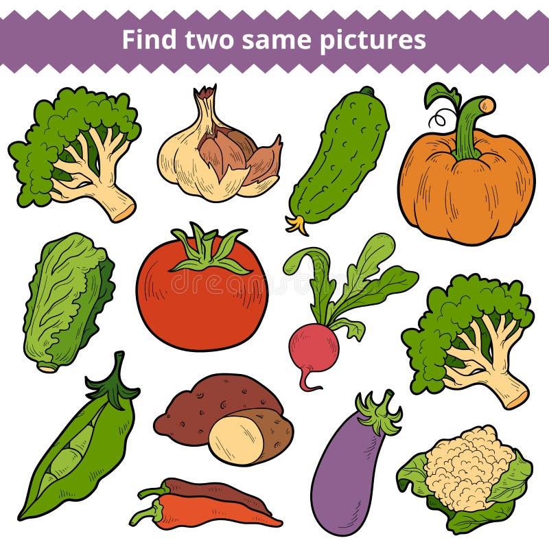 Achado dois as mesmas imagens Jogo do vetor dos vegetais ilustração royalty free
