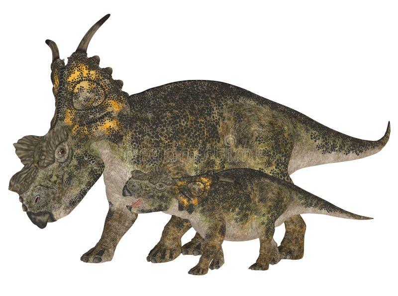 Achelousaurus adulte et jeune illustration stock