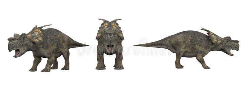 Achelousaurus Isolato del dinosauro su bianco illustrazione di stock